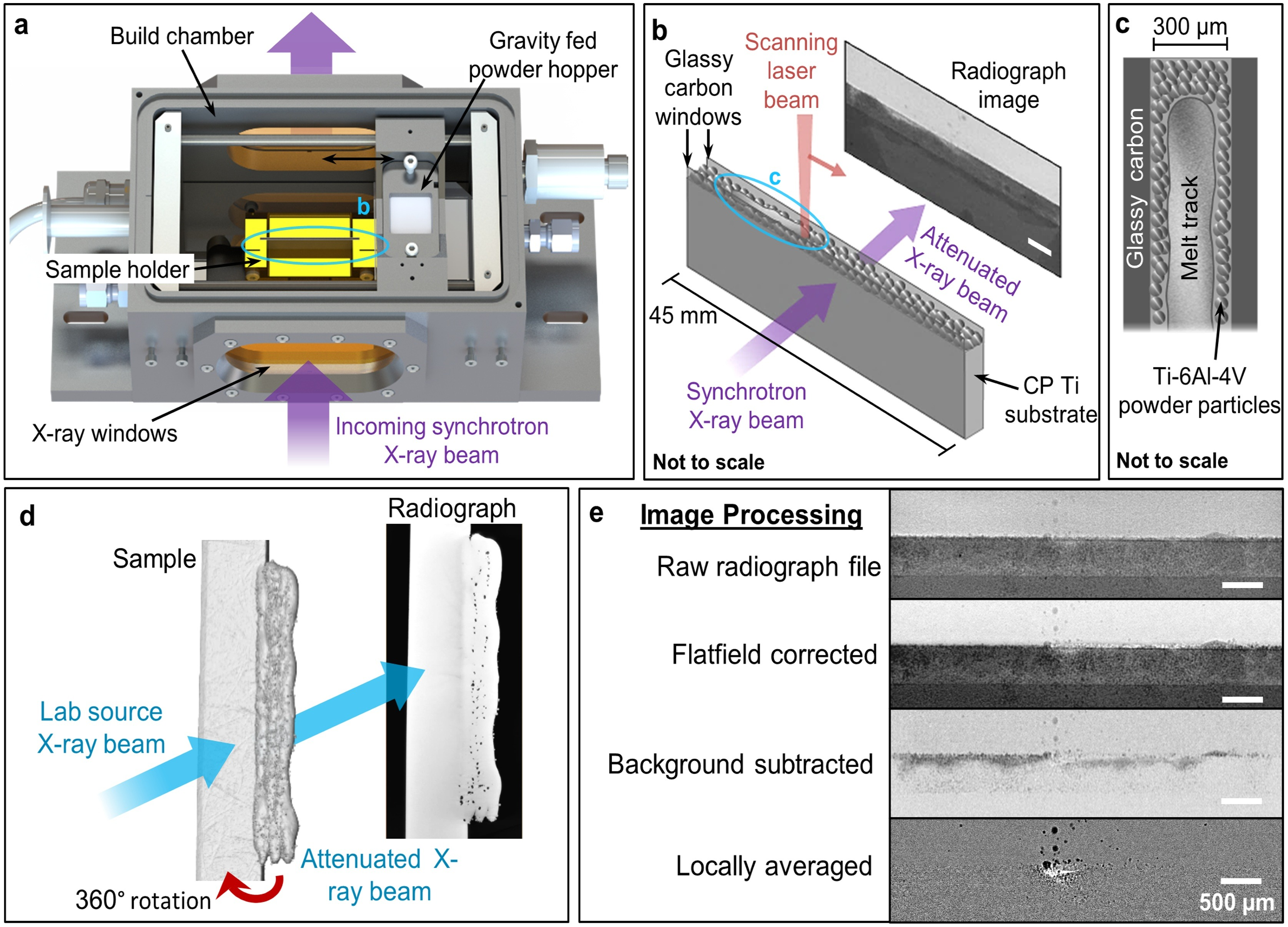 """a Experimental build chamber with key components labelled. b Simplified schematic of the sample holder during in-situ melting. c Schematic of the substrate and powder particles and melt track. d Schematic of μCT sample scans. e Image processing methods."" - ""a Experimental build chamber with key components labelled. b Simplified schematic of the sample holder during in-situ melting. c Schematic of the substrate and powder particles and melt track. d Schematic of μCT sample scans. e Image processing methods."" Reprinted from Additive Manufacturing, 36, Sinclair, L., Leung, C.L.A., Marussi, S., Clark, S.J., Chen, Y., Olbinado, M.P., Rack, A., Gardy, J., Baxter, G.J., Lee, P.D., In-situ radiographic and ex-situ tomographic analysis of pore interactions during multilayer builds in laser powder bed fusion, 101512., Copyright (2020), with permission from Elsevier."