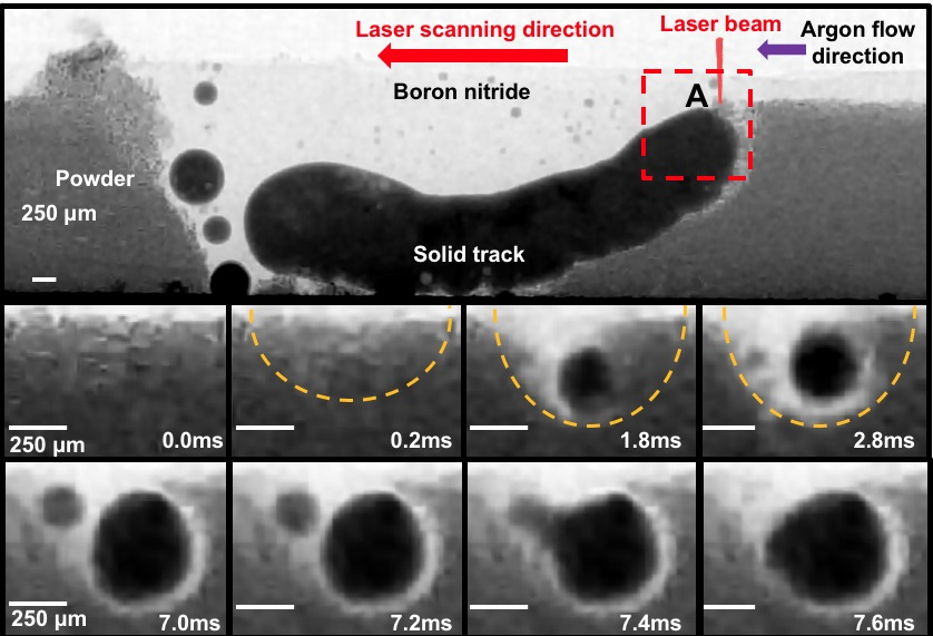 In situ X-ray imaging of defect and molten pool dynamics in laser additive manufacturing.