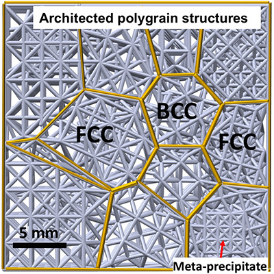 Schematic of polygrain structures - Nature, Vol 565, Issue 7739, 17 January 2019 (DOI: 10.1038/s41586-018-0850-3).